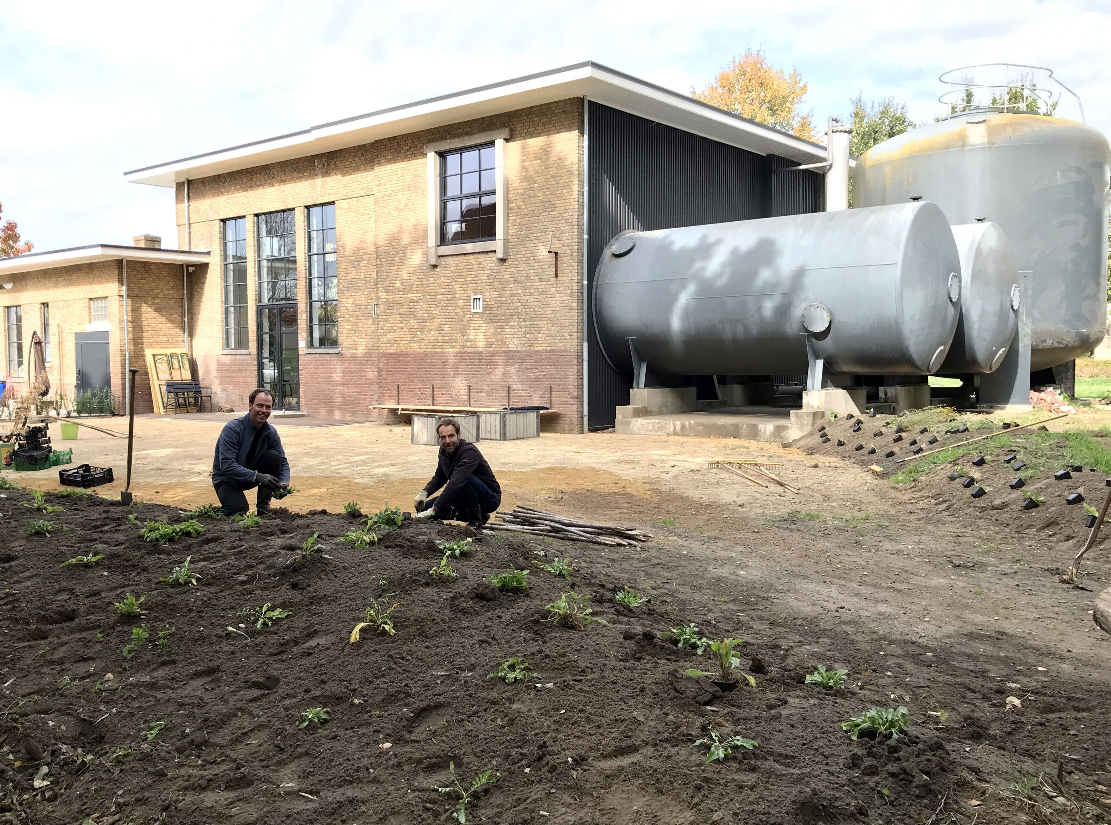 Aanleg tuin achterkant